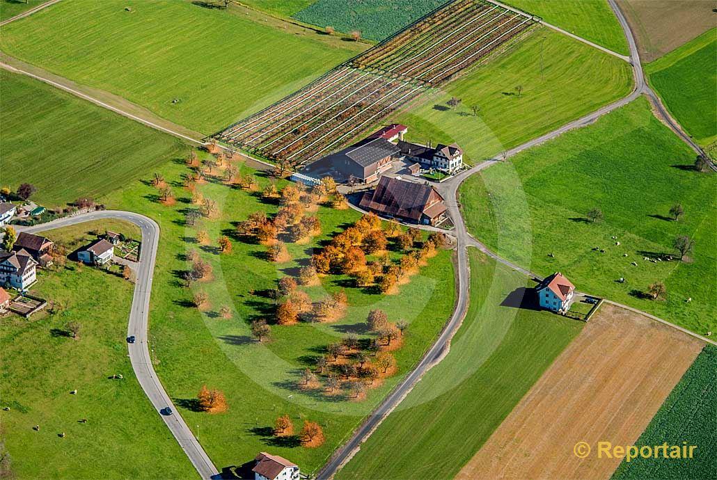 Foto: Goldene Zeiten auf einem Bauernhof bei Eich LU. (Luftaufnahme von Niklaus Wächter)