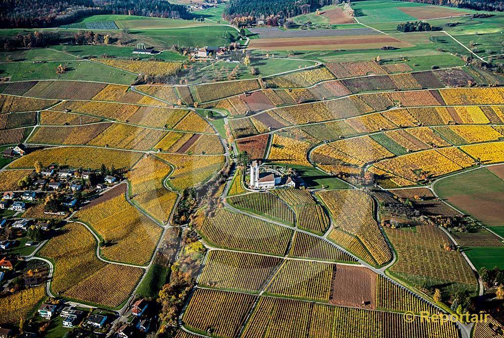 Foto: Goldener Herbst in Hallau SH. (Luftaufnahme von Niklaus Wächter)