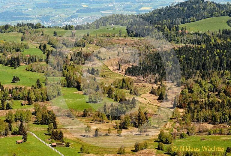 Foto: Das Hochmoor auf dem Zugerberg. (Luftaufnahme von Niklaus Wächter)