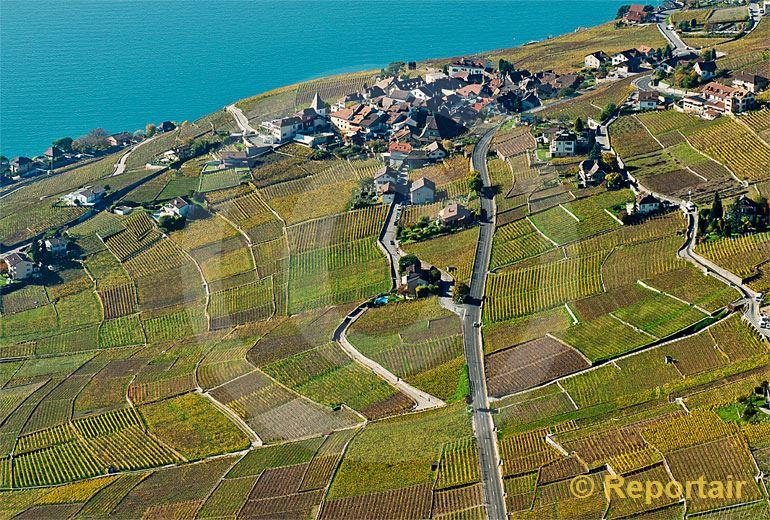 Foto: Bei Cully (VD) am Genfersee.. (Luftaufnahme von Niklaus Wächter)