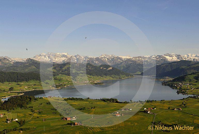 Foto: Der Sihlsee im Sommer. (Luftaufnahme von Niklaus Wächter)