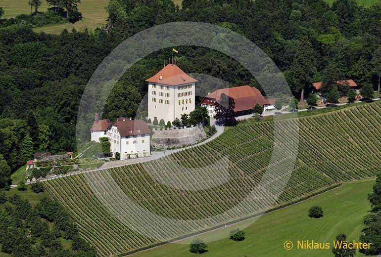 Foto: Schloss Heidegg bei Hitzkirch LU. (Luftaufnahme von Niklaus Wächter)