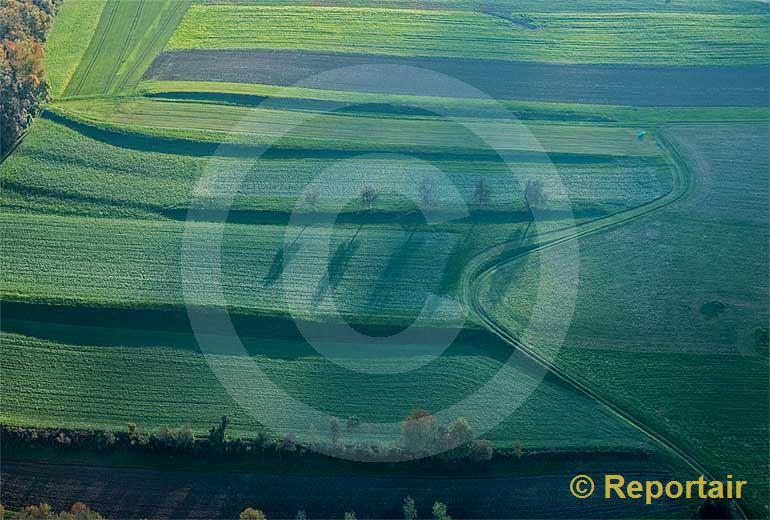 Foto: Herbststimmung bei Eschenz (TG). (Luftaufnahme von Niklaus Wächter)