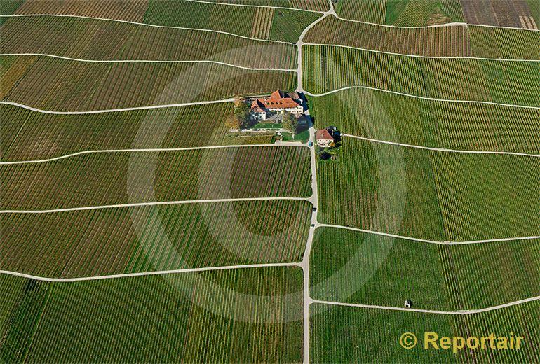 Foto: Winzerhof in den Weinberger oberhalb Rolle VD.. (Luftaufnahme von Niklaus Wächter)