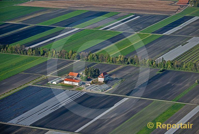 Foto: Hof im Grossen Moos des Berner Seelandes.. (Luftaufnahme von Niklaus Wächter)