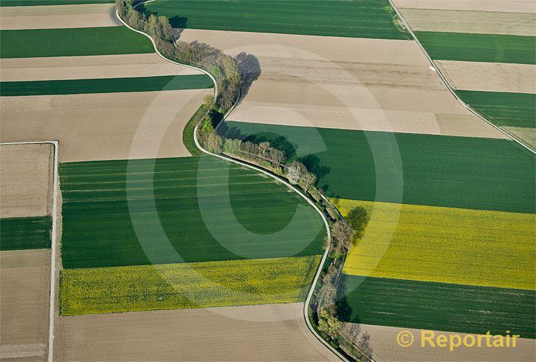 Foto: LArbogne durchschlängelt die Felder bei Dompierre FR.  .. (Luftaufnahme von Niklaus Wächter)