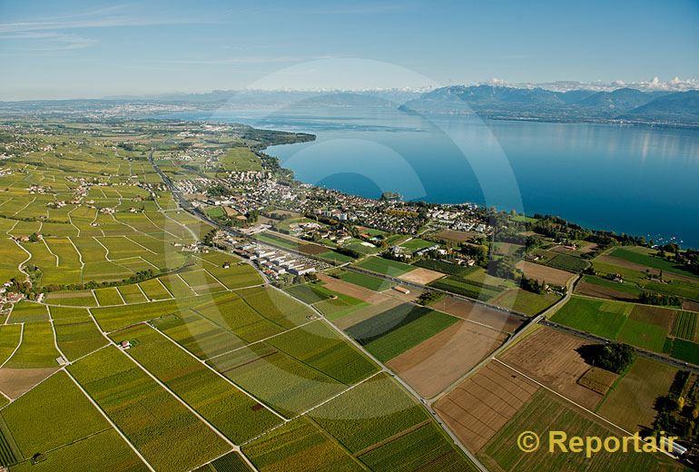 Foto: Am Genfersee bei Rolle (VD).. (Luftaufnahme von Niklaus Wächter)