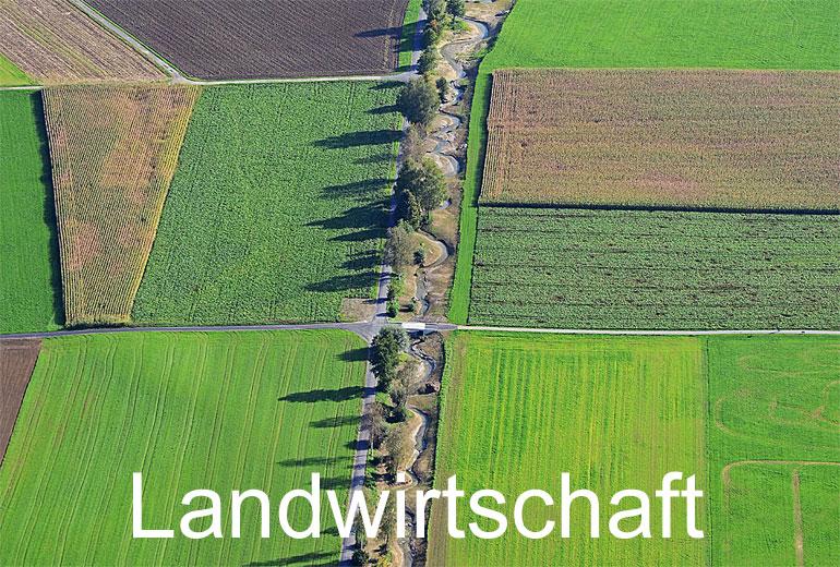 Foto: LANDWIRTSCHAFT. (Luftaufnahme von Niklaus Wächter)