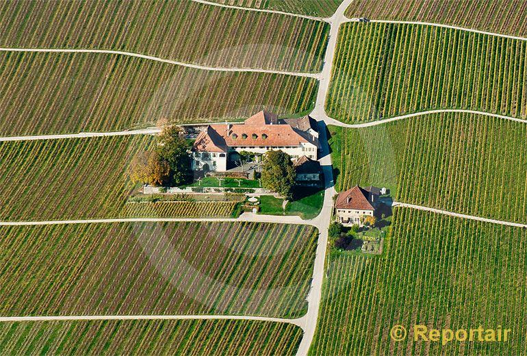 Foto: Winzerhof in den Weinbergen bei  Rolle VD. (Luftaufnahme von Niklaus Wächter)