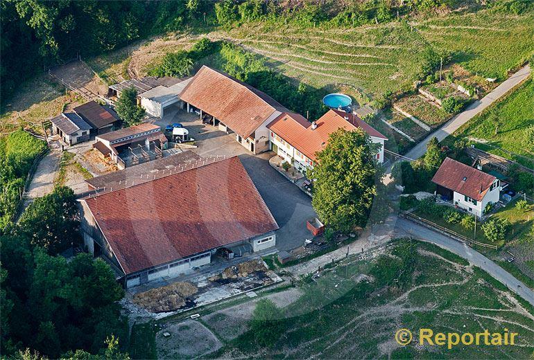 Foto: Bauernhof bei Duggingen BL. (Luftaufnahme von Niklaus Wächter)