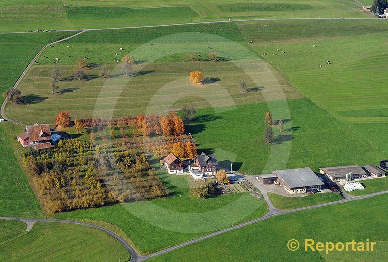 Foto: Herbstlicher Hof bei Kuessnacht am Rigi SZ.. (Luftaufnahme von Niklaus Wächter)