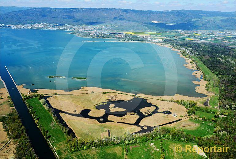 Foto: Fanel am Neuenburgersee zählt zu den bedeutendsten Vogelschutzgebieten der Schweiz. (Luftaufnahme von Niklaus Wächter)