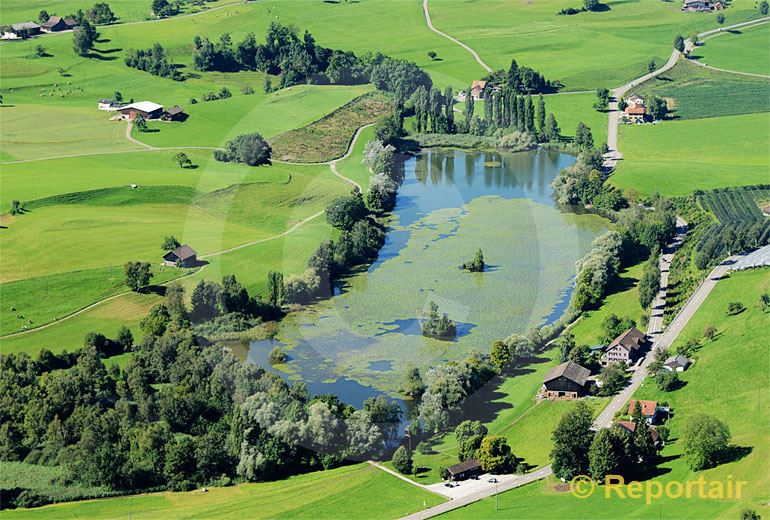 Foto: Der Bettenauerweiher ist ein ursprünglicher Moorweiher bei Oberuzwil SG. (Luftaufnahme von Niklaus Wächter)