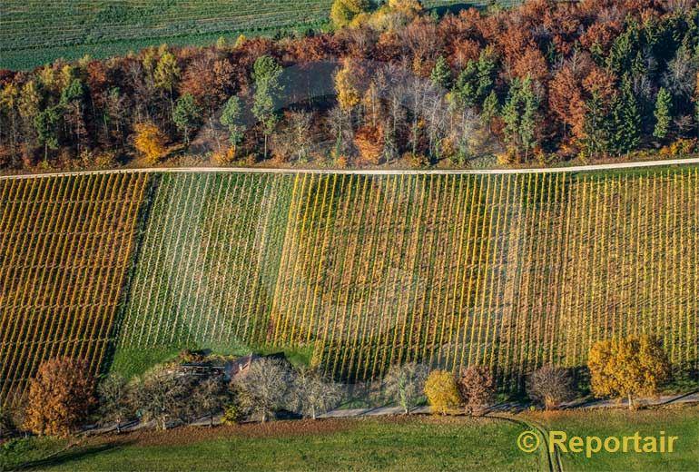 Foto: Herbst im Klettgau SH. (Luftaufnahme von Niklaus Wächter)