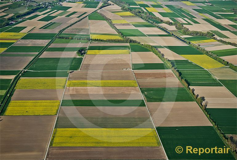 Foto: Felder in der La Broye - Ebene südlich vom Murtensee VD.   .. (Luftaufnahme von Niklaus Wächter)