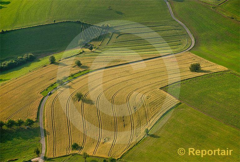 Foto: Sommerfelder bei Duggingen (BL).. (Luftaufnahme von Niklaus Wächter)