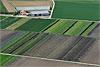 Foto 519: Gemüse-Hof im Grossen Moos bei Kerzers FR..