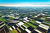 Foto 50: Im Grossen Moos bei Kerzers FR schützen Gemüsebauern ihre Felder vor der Kälte.