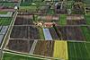 Foto 51: Feldermosaik im Grossen Moos bei Treiten BE.