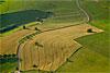 Foto 254: Sommerfelder bei Duggingen (BL)..
